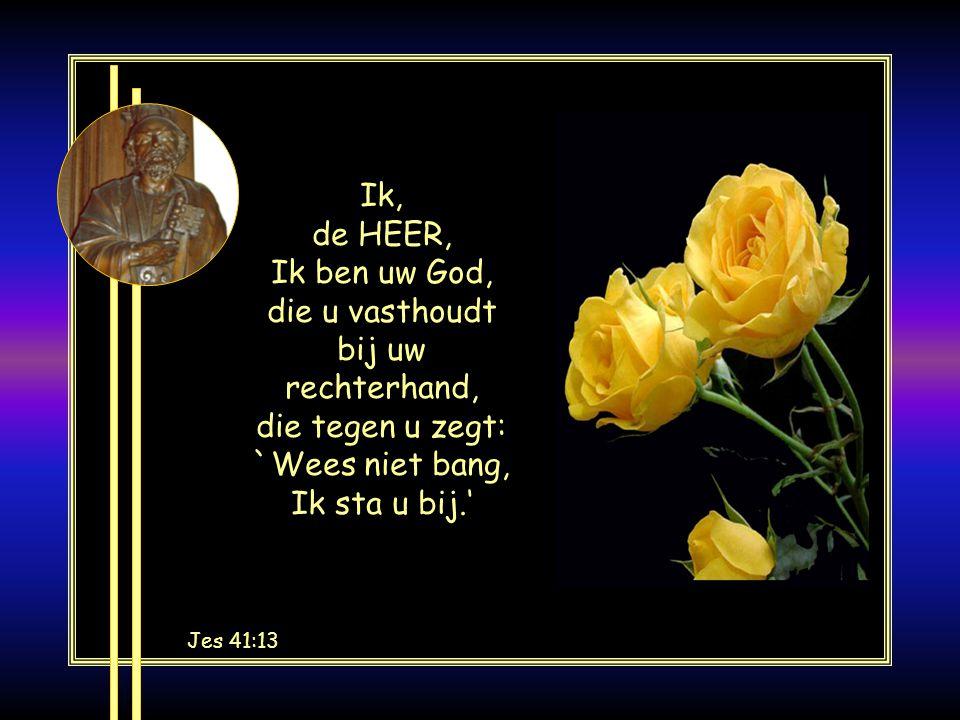 Ik, de HEER, Ik ben uw God, die u vasthoudt bij uw rechterhand, die tegen u zegt: `Wees niet bang, Ik sta u bij.' Jes 41:13