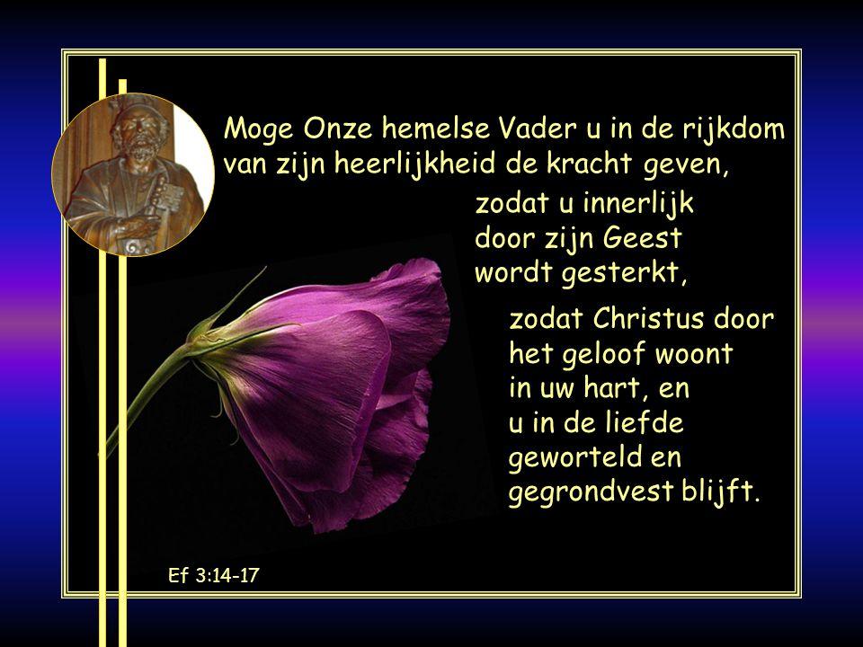 Jes 41:10 Wees niet bang, want Ik ben bij u; wees niet angstig, want Ik ben uw God; Ik maak u sterk en sta u bij, Ik ondersteun u met mijn rechtvaardi