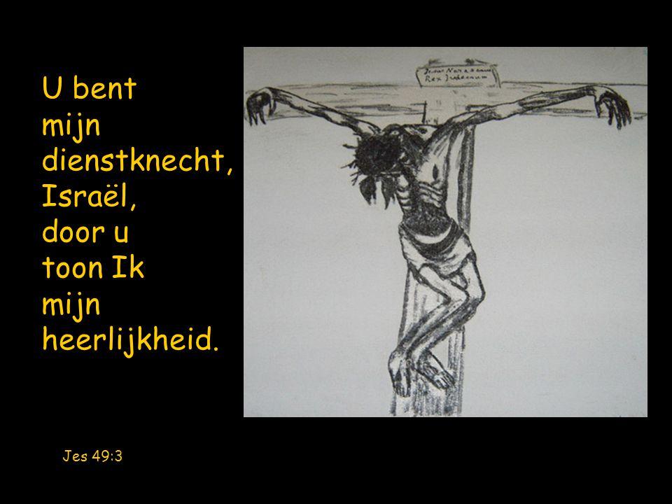 U bent mijn dienstknecht, Israël, door u toon Ik mijn heerlijkheid. Jes 49:3