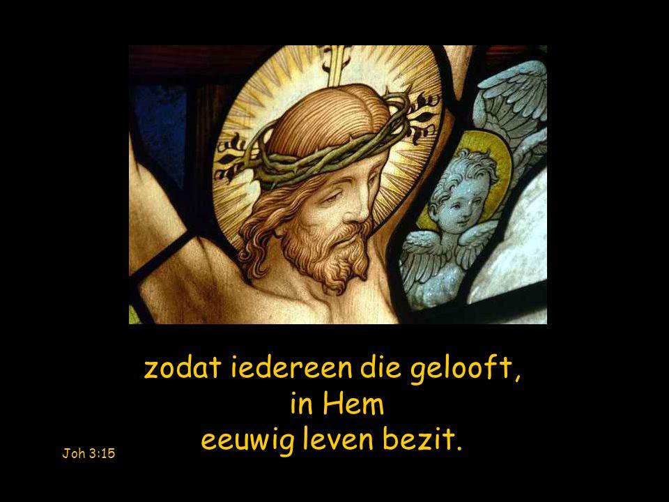 Evenals Mozes in de woestijn de slang omhoog geheven heeft, zo moet ook de Mensenzoon omhoog worden geheven, Joh 3:14