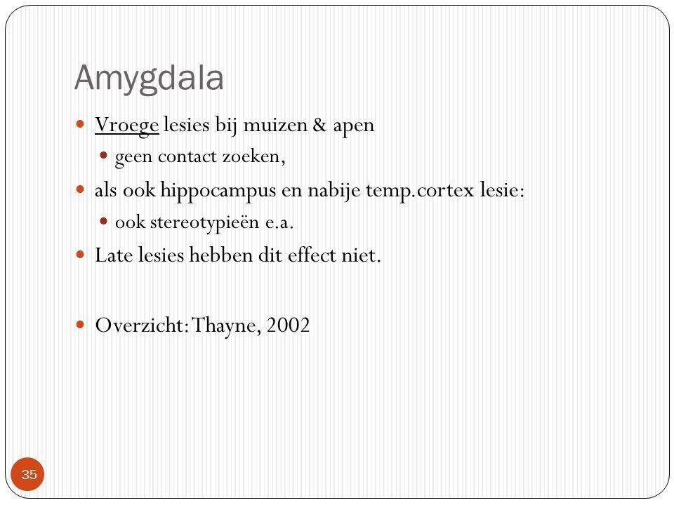 Amygdala  35 Vroege lesies bij muizen & apen geen contact zoeken, als ook hippocampus en nabije temp.cortex lesie: ook stereotypieën e.a. Late lesies