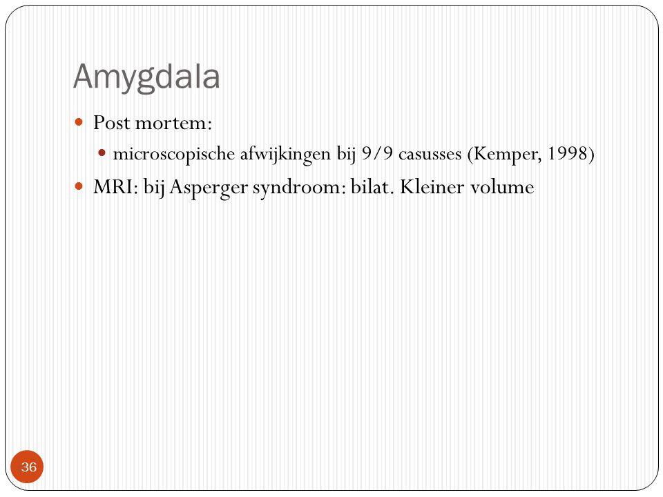 Amygdala  36 Post mortem: microscopische afwijkingen bij 9/9 casusses (Kemper, 1998) MRI: bij Asperger syndroom: bilat. Kleiner volume