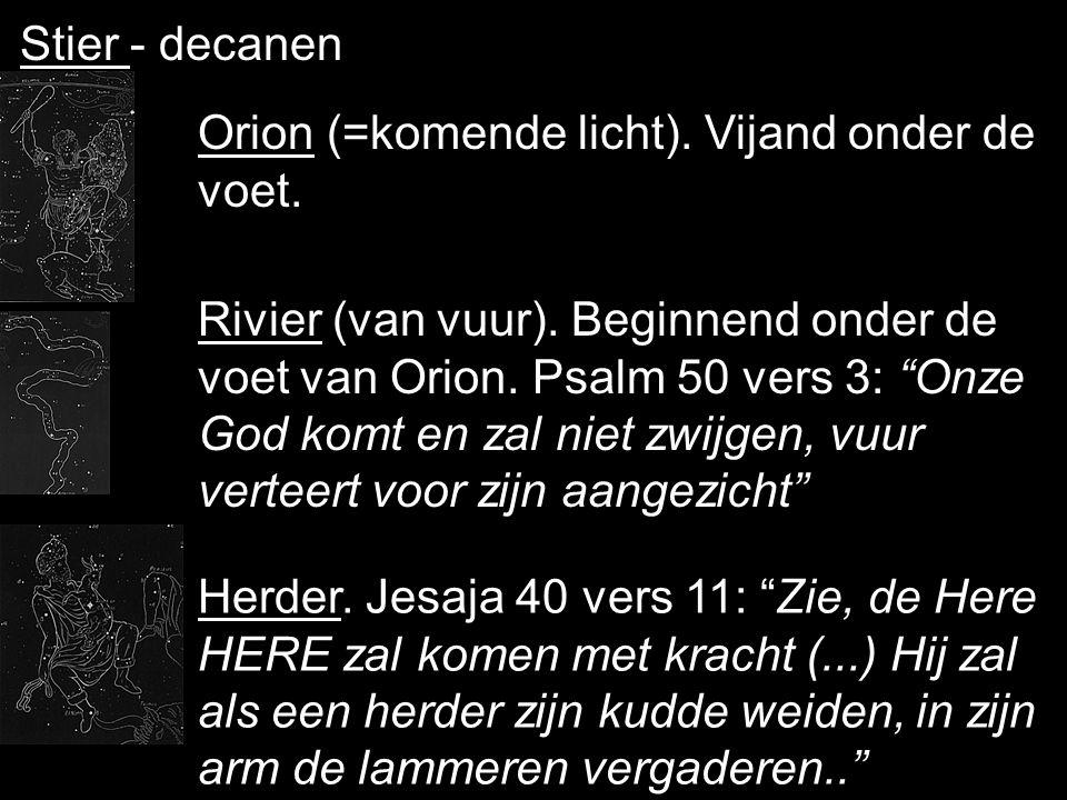 """3-de boek - 1-ste teken - Stier Net als bok en ram een offerdier. Hier met hoorns aanstormend. Psalm 44 vers 4 en 5: """"Gij toch zijt mijn Koning, o God"""