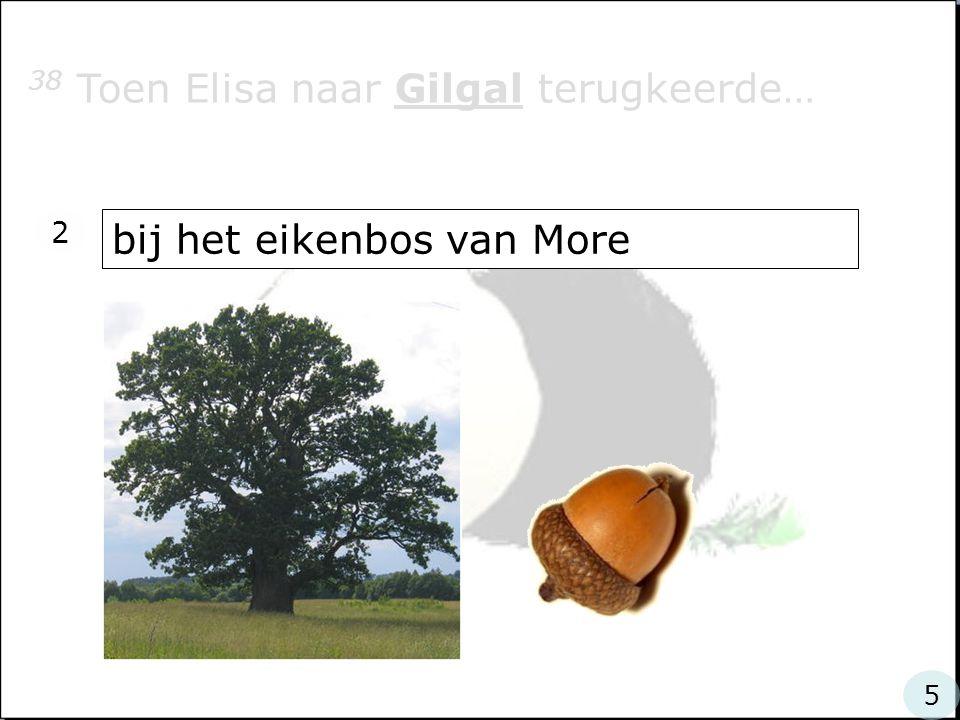 38 Toen Elisa naar Gilgal terugkeerde… bij het eikenbos van More 2 5