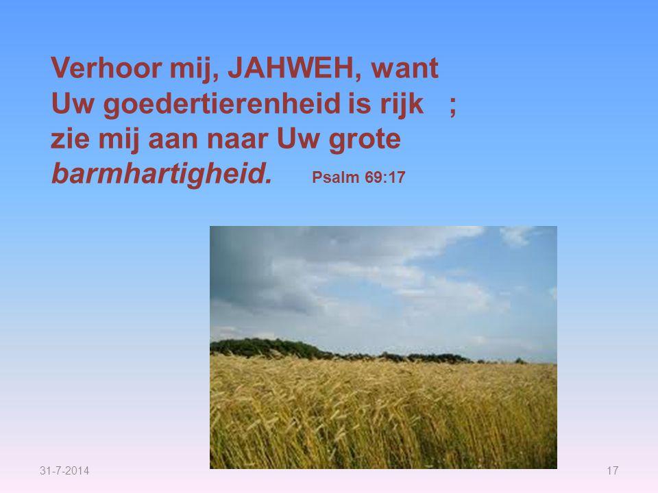 31-7-201417 Verhoor mij, JAHWEH, want Uw goedertierenheid is rijk ; zie mij aan naar Uw grote barmhartigheid. Psalm 69:17