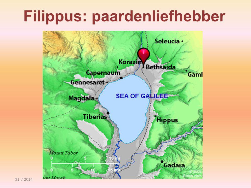 Filippus: paardenliefhebber 31-7-2014