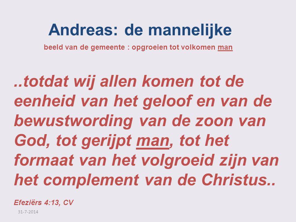 Andreas: de mannelijke beeld van de gemeente : opgroeien tot volkomen man..totdat wij allen komen tot de eenheid van het geloof en van de bewustwordin