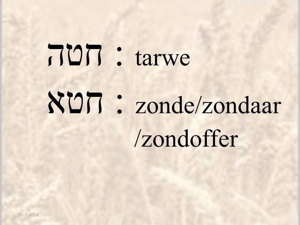 31-7-2014 חטה : tarwe חטא : zonde/zondaar /zondoffer