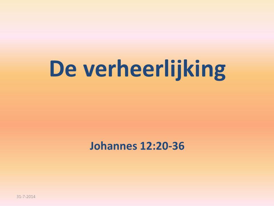 …dat de Zoon van de mens verheerlijkt zal worden…. 31-7-2014