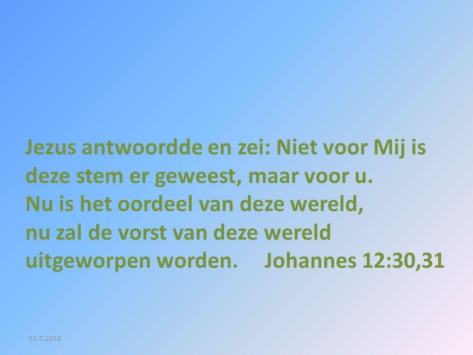 31-7-2014 Jezus antwoordde en zei: Niet voor Mij is deze stem er geweest, maar voor u. Nu is het oordeel van deze wereld, nu zal de vorst van deze wer