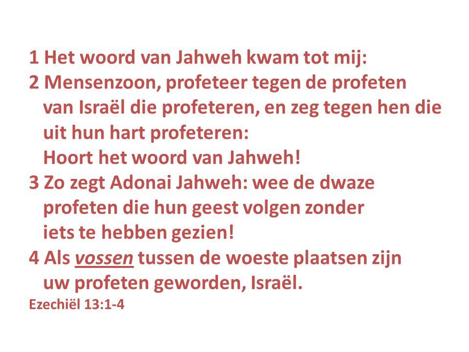 1 Het woord van Jahweh kwam tot mij: 2 Mensenzoon, profeteer tegen de profeten van Israël die profeteren, en zeg tegen hen die uit hun hart profeteren