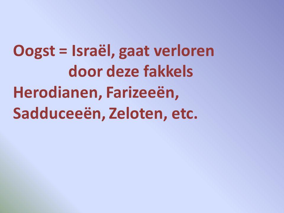 Oogst = Israël, gaat verloren door deze fakkels Herodianen, Farizeeën, Sadduceeën, Zeloten, etc.