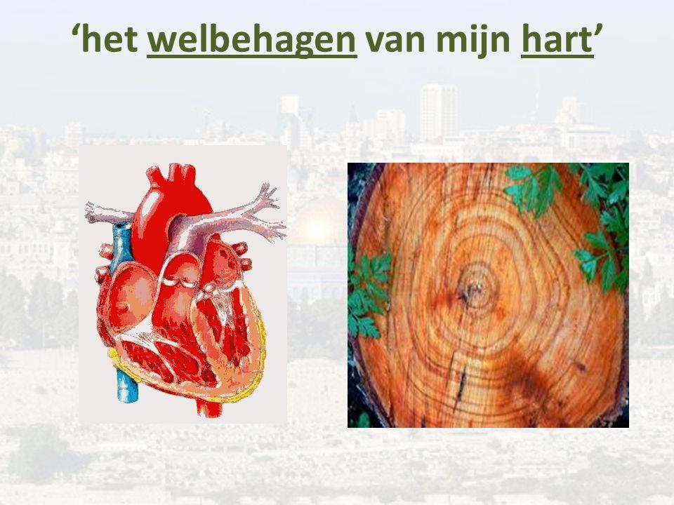 'het welbehagen van mijn hart'