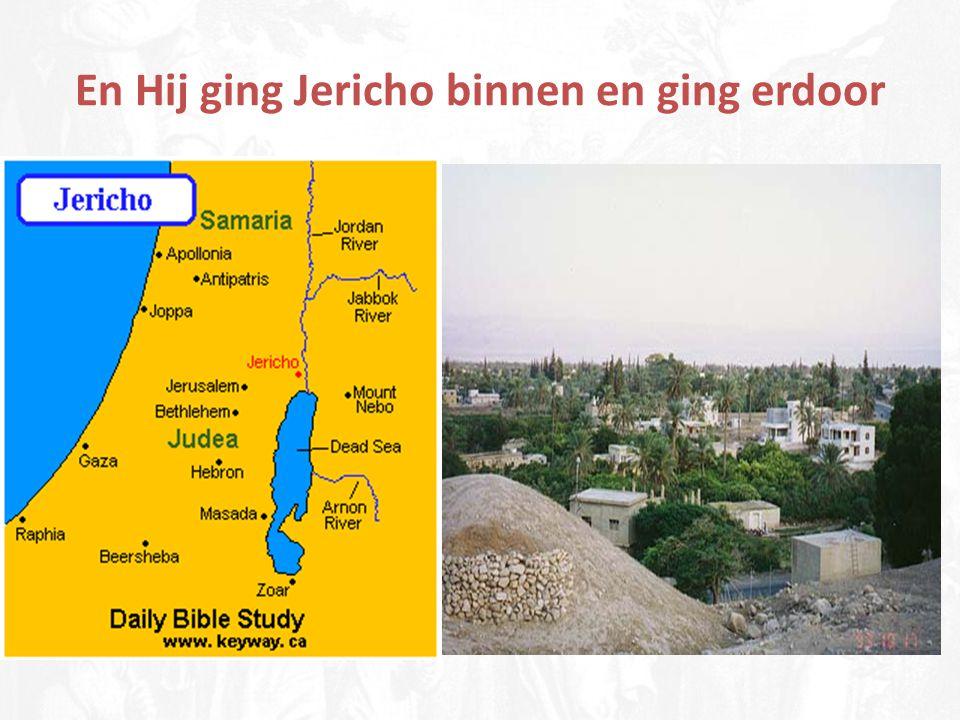Jericho, de palmstad (maanstad)
