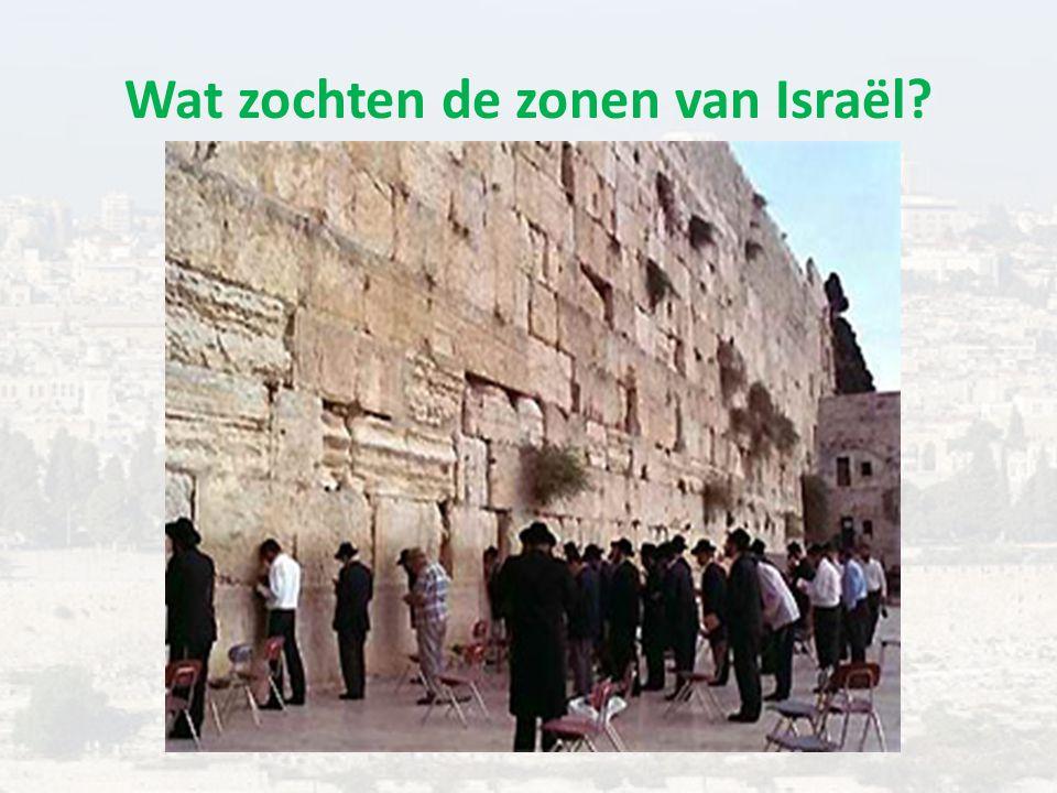 Wat zochten de zonen van Israël?