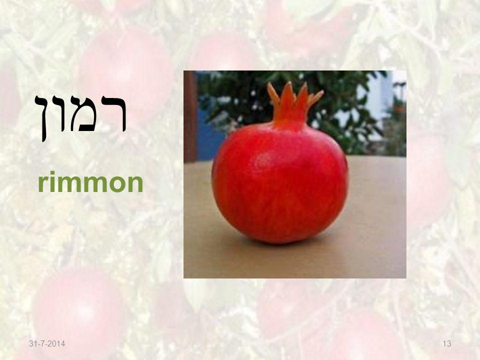 31-7-201413 רמון rimmon