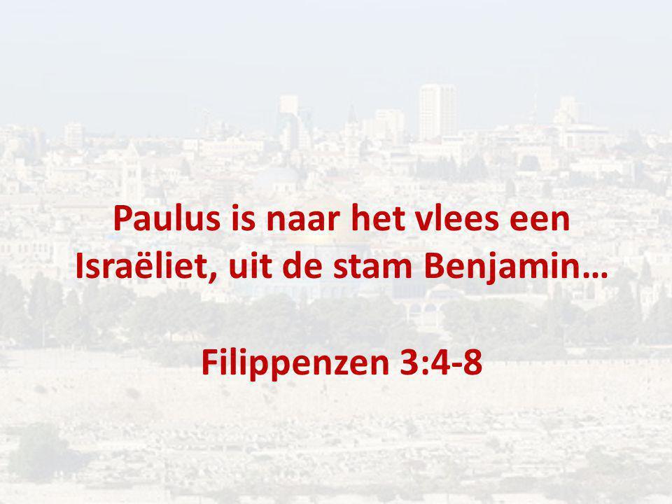 Paulus is naar het vlees een Israëliet, uit de stam Benjamin… Filippenzen 3:4-8