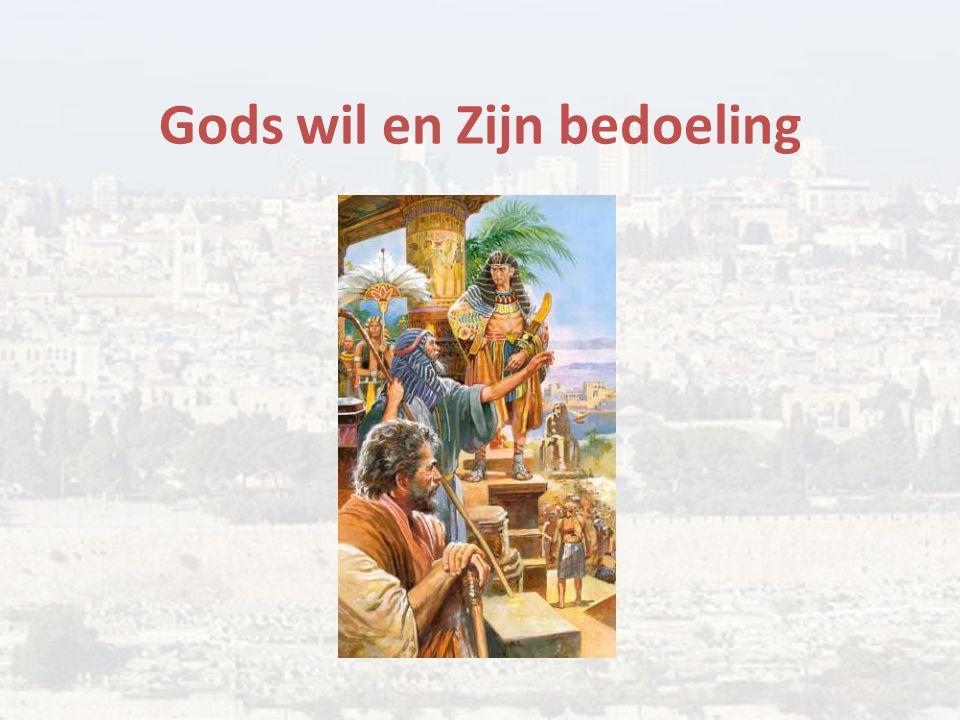Gods wil en Zijn bedoeling