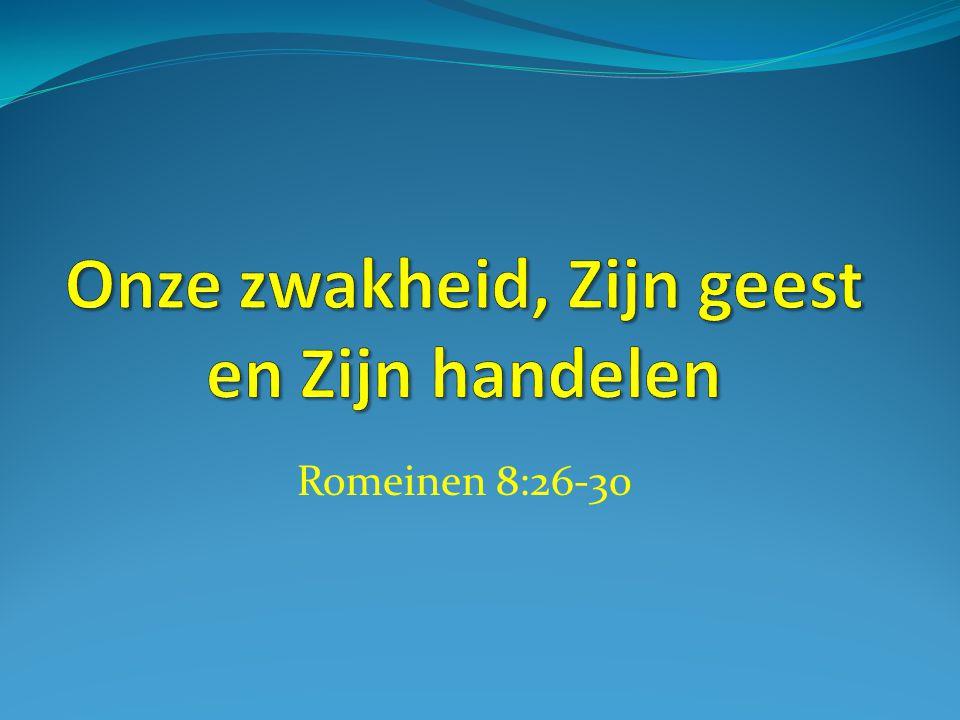 Romeinen 8:26-30