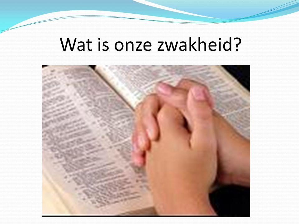 Wat wij zouden bidden, overeenkomstig met wat moet zijn, weten wij niet