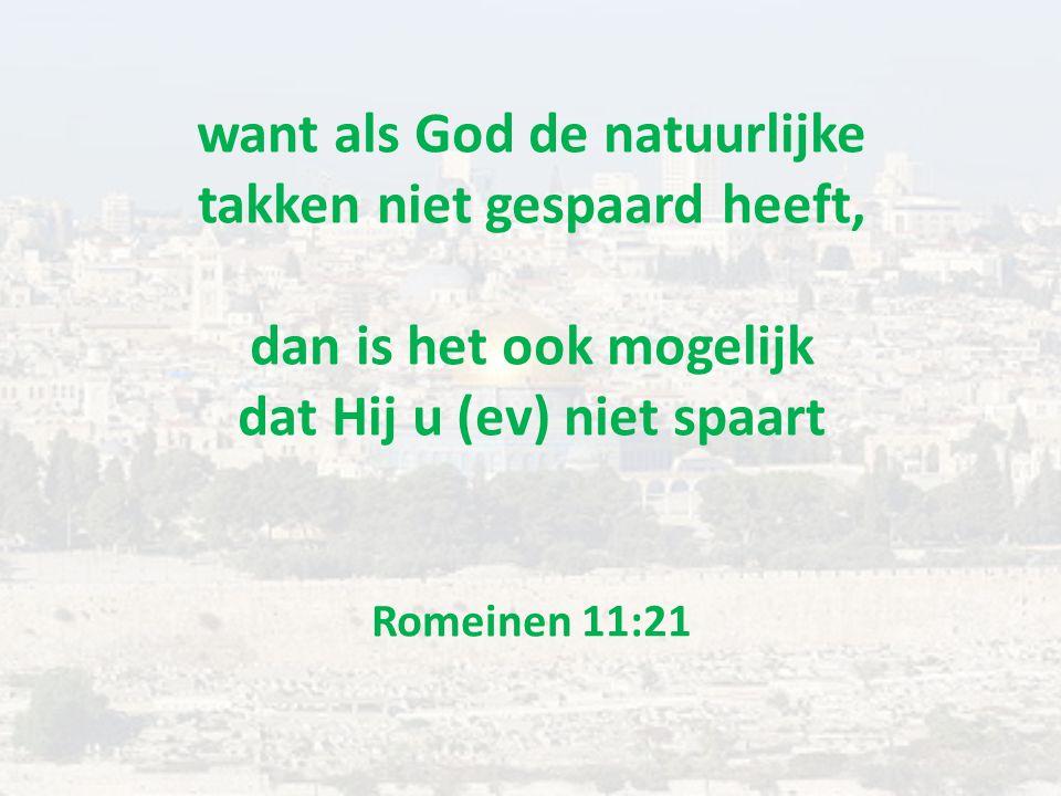 want als God de natuurlijke takken niet gespaard heeft, dan is het ook mogelijk dat Hij u (ev) niet spaart Romeinen 11:21