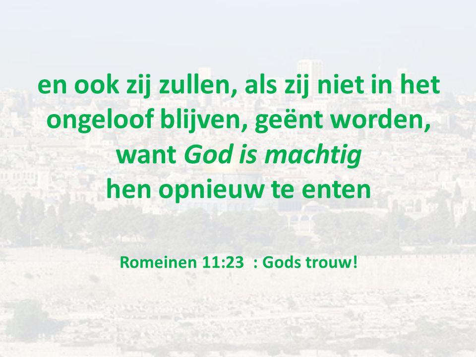 en ook zij zullen, als zij niet in het ongeloof blijven, geënt worden, want God is machtig hen opnieuw te enten Romeinen 11:23 : Gods trouw!
