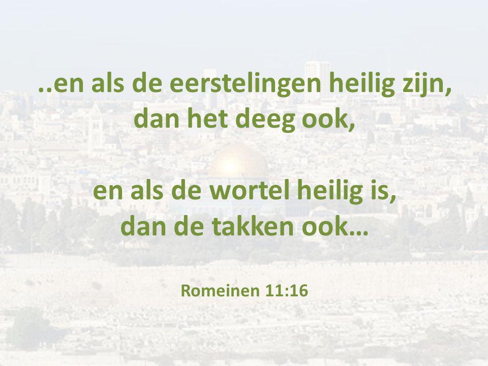 ..en als de eerstelingen heilig zijn, dan het deeg ook, en als de wortel heilig is, dan de takken ook… Romeinen 11:16