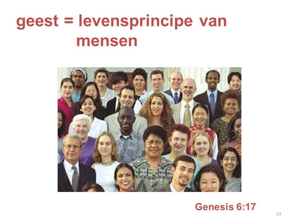 13 geest = levensprincipe van mensen Genesis 6:17