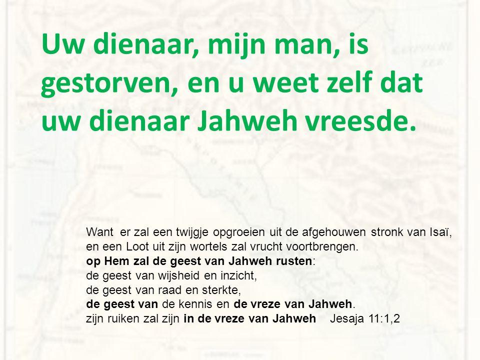 Uw dienaar, mijn man, is gestorven, en u weet zelf dat uw dienaar Jahweh vreesde. Want er zal een twijgje opgroeien uit de afgehouwen stronk van Isaï,