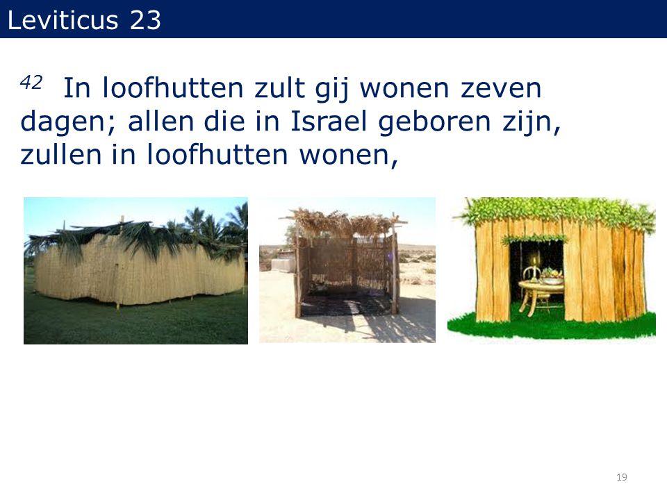 Leviticus 23 42 In loofhutten zult gij wonen zeven dagen; allen die in Israel geboren zijn, zullen in loofhutten wonen, 19