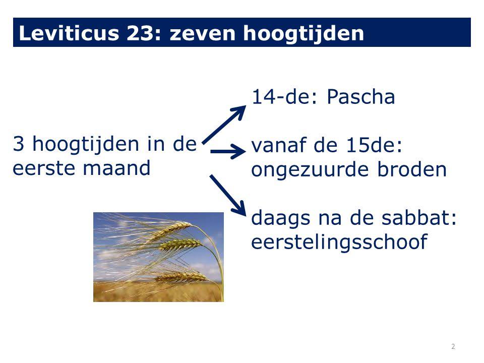 3 hoogtijden in de eerste maand 14-de: Pascha vanaf de 15de: ongezuurde broden daags na de sabbat: eerstelingsschoof Leviticus 23: zeven hoogtijden 2