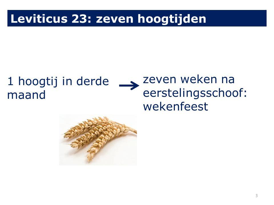 1 hoogtij in derde maand zeven weken na eerstelingsschoof: wekenfeest Leviticus 23: zeven hoogtijden 3