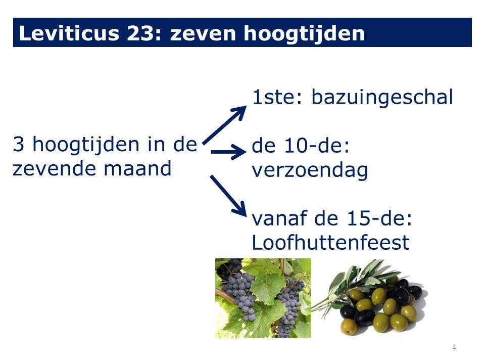 3 hoogtijden in de zevende maand 1ste: bazuingeschal de 10-de: verzoendag vanaf de 15-de: Loofhuttenfeest Leviticus 23: zeven hoogtijden 4