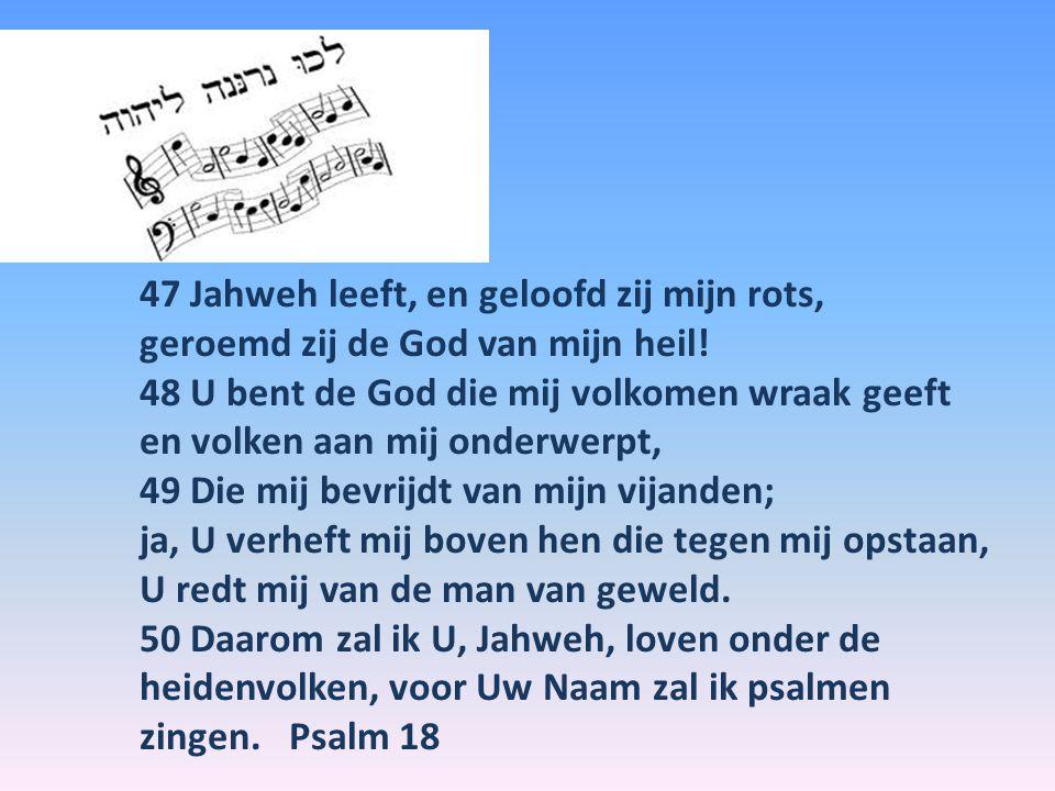 47 Jahweh leeft, en geloofd zij mijn rots, geroemd zij de God van mijn heil.