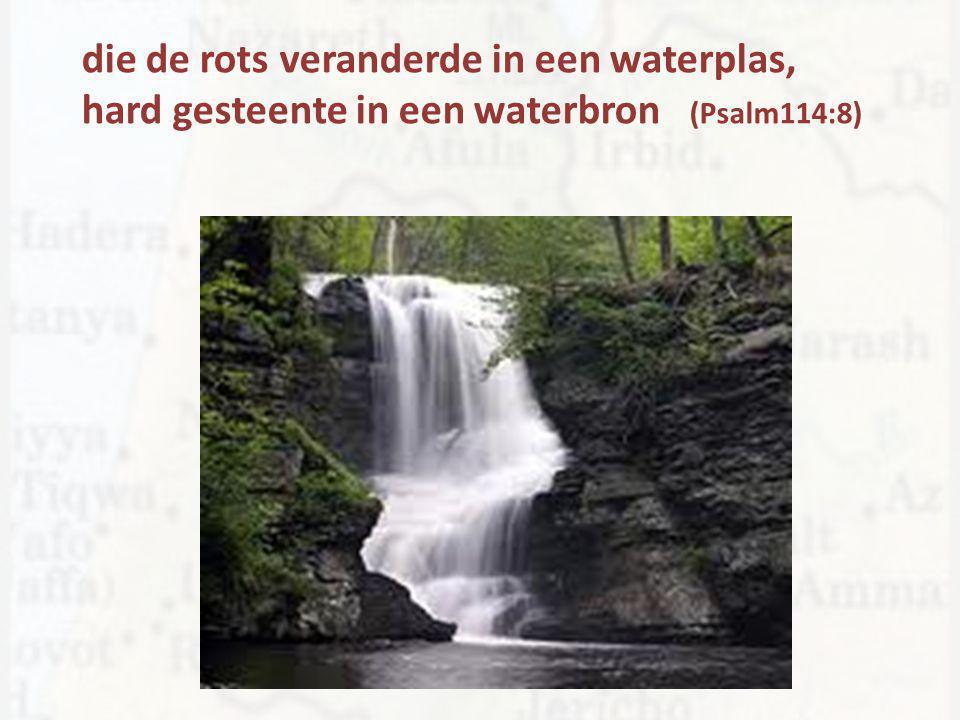 die de rots veranderde in een waterplas, hard gesteente in een waterbron (Psalm114:8)