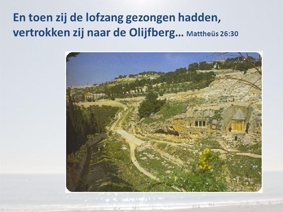 En toen zij de lofzang gezongen hadden, vertrokken zij naar de Olijfberg… Mattheüs 26:30