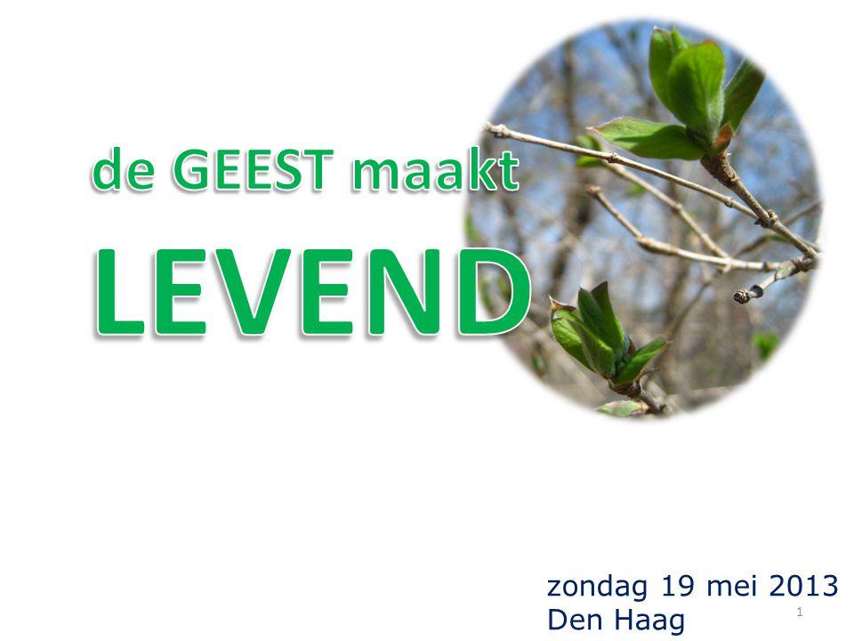 zondag 19 mei 2013 Den Haag 1