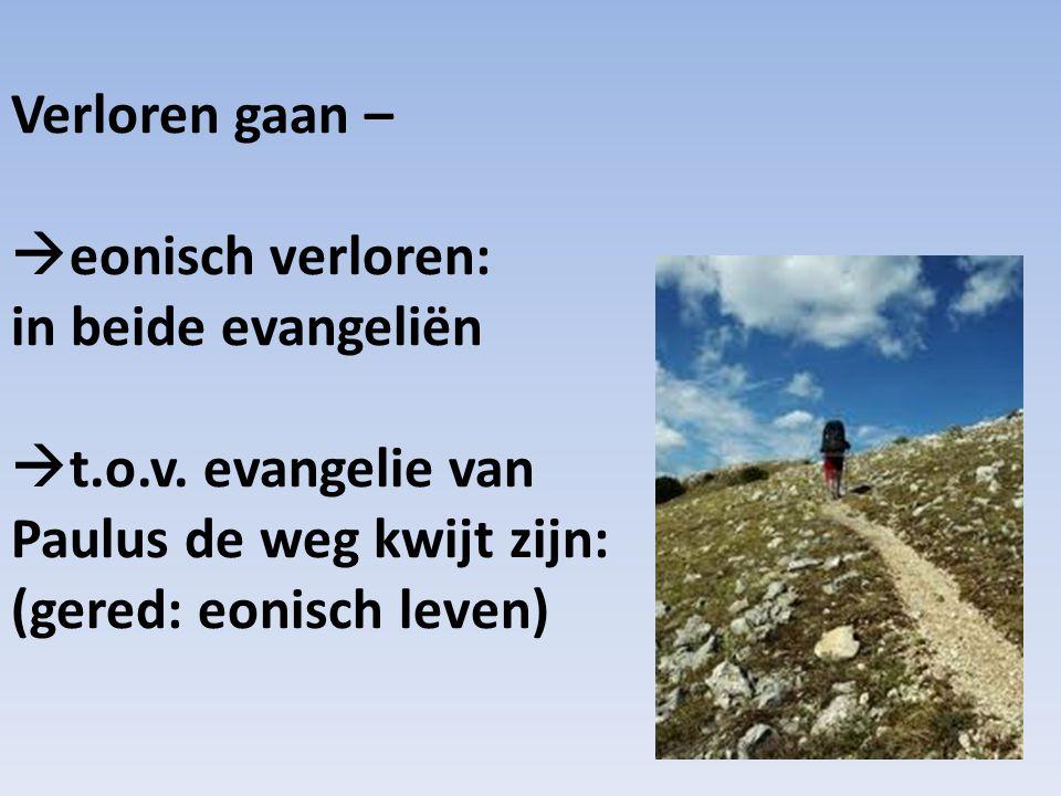 Verloren gaan –  eonisch verloren: in beide evangeliën  t.o.v.