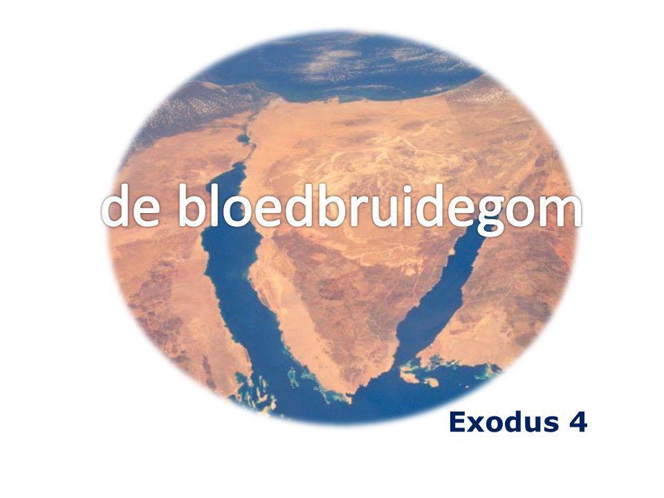 18 Toen keerde Mozes... Exodus 4 = geroepen bij de brandende braamstruik 2