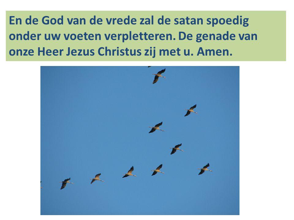 En de God van de vrede zal de satan spoedig onder uw voeten verpletteren. De genade van onze Heer Jezus Christus zij met u. Amen.