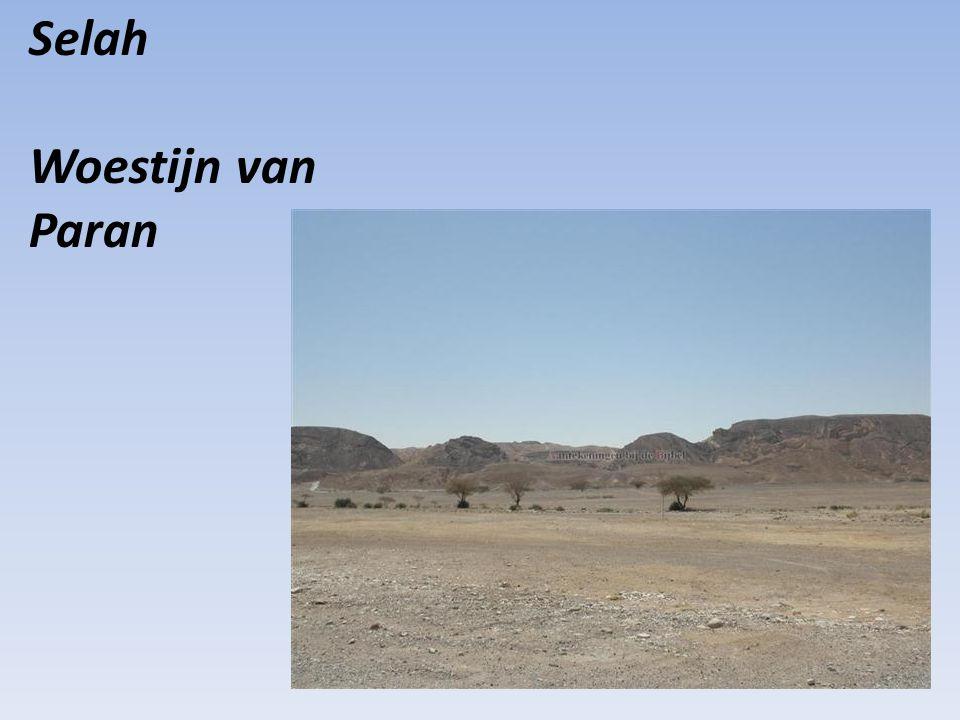 Selah Woestijn van Paran