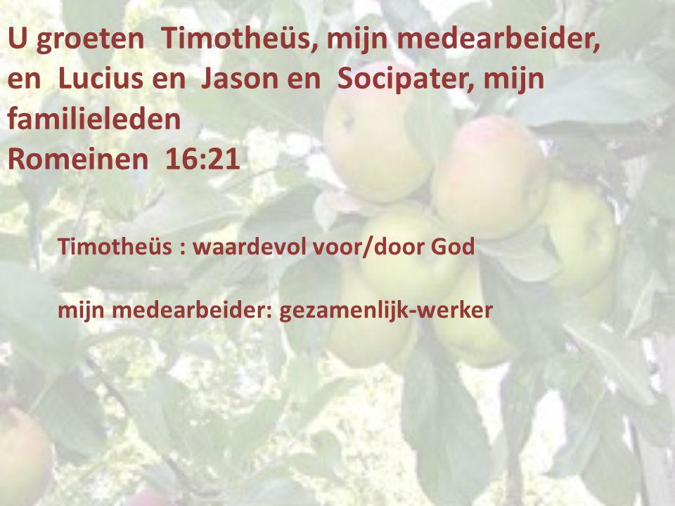 U groeten Timotheüs, mijn medearbeider, en Lucius en Jason en Socipater, mijn familieleden Romeinen 16:21 Timotheüs : waardevol voor/door God mijn medearbeider: gezamenlijk-werker