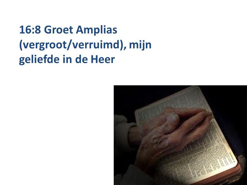 16:8 Groet Amplias (vergroot/verruimd), mijn geliefde in de Heer