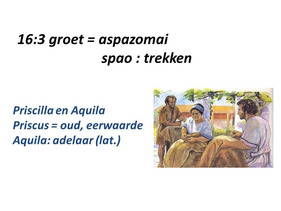 16:3 groet = aspazomai spao : trekken Priscilla en Aquila Priscus = oud, eerwaarde Aquila: adelaar (lat.)