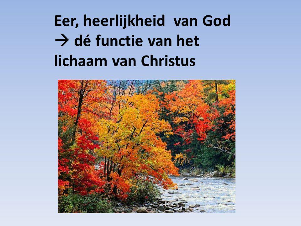 Eer, heerlijkheid van God  dé functie van het lichaam van Christus