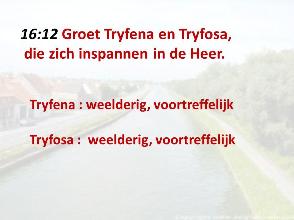 16:12 Groet Tryfena en Tryfosa, die zich inspannen in de Heer.