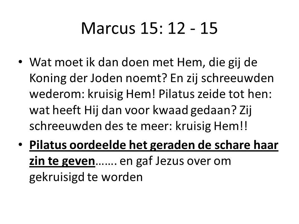 Marcus 15: 12 - 15 Wat moet ik dan doen met Hem, die gij de Koning der Joden noemt.