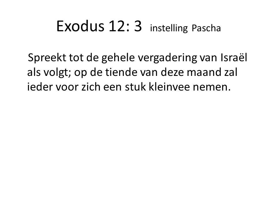 Exodus 12: 3 instelling Pascha Spreekt tot de gehele vergadering van Israël als volgt; op de tiende van deze maand zal ieder voor zich een stuk kleinvee nemen.