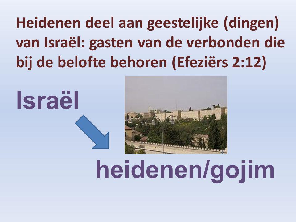Heidenen deel aan geestelijke (dingen) van Israël: gasten van de verbonden die bij de belofte behoren (Efeziërs 2:12) Israël heidenen/gojim