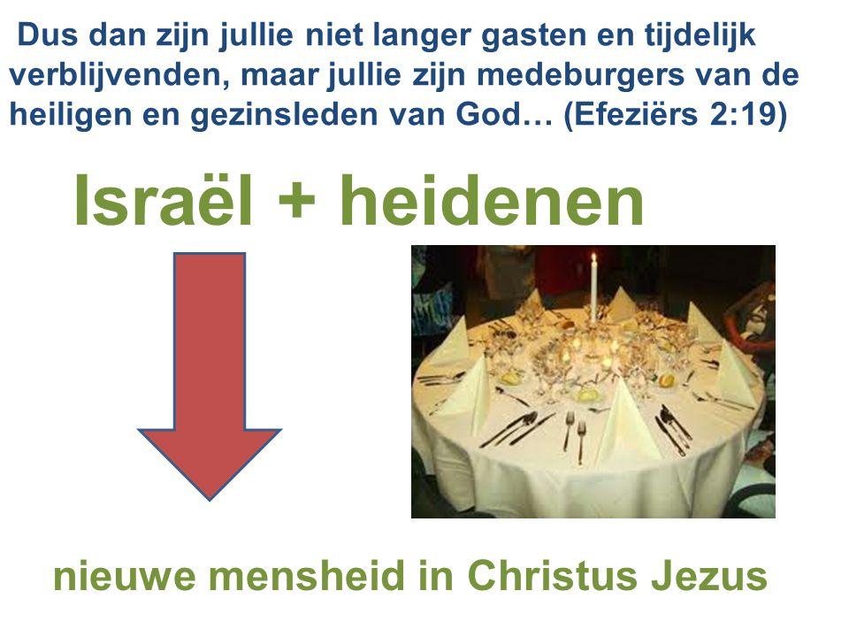 Dus dan zijn jullie niet langer gasten en tijdelijk verblijvenden, maar jullie zijn medeburgers van de heiligen en gezinsleden van God… (Efeziërs 2:19) Israël + heidenen nieuwe mensheid in Christus Jezus